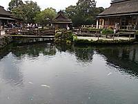 Oshinohakkai5