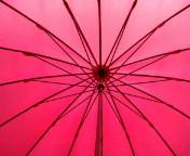雨降りの季節