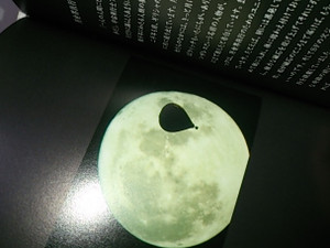 Moonbook2