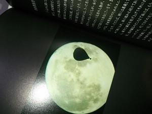 Moonbook2